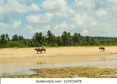 Couple of tourists riding on the beach of Porto da Rua, Sao Miguel dos Milagres, Alagoas
