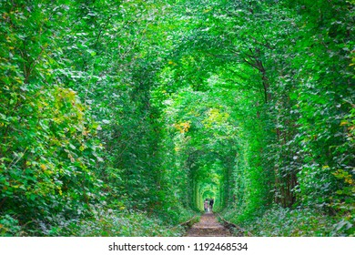 Couple in tunnel of love in Klevan, created by nature with the help of trees