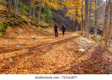 Couple walk through a beech forest, Sierra Cebollera Natural Park, La Rioja, Spain