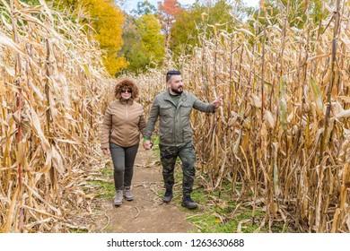 A couple walking in a cornfield