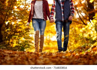couple walking in the park on a sunny autumn day
