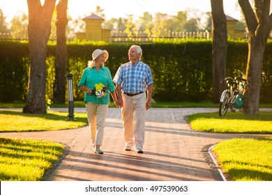 Couple walking in the park. Senior people happily smiling. Feel the warmth of heart. Our journey through life.