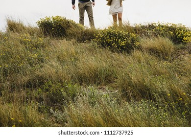 Couple walking through the countryside holding each other's hands.
