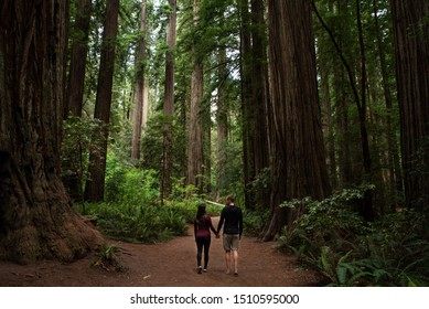 Couple walking through redwood forest at Redwoods National and State Parks, California