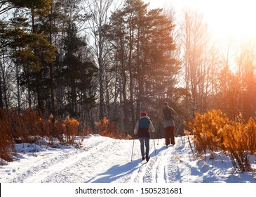 A couple of young people go cross-country skiing on a beautiful winter evening.