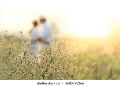 Couples hold hands at sunset, romantic young lovers with love for blurred images and foreground scenes with clear grass.