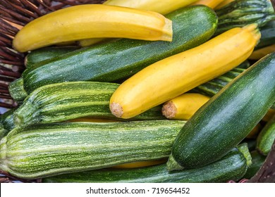 Courgettes zucchini marrow in a basked freshly picked on a farmers market day. Vivid green and yellow colors concept Concept for organic ecological homegrown healthy food