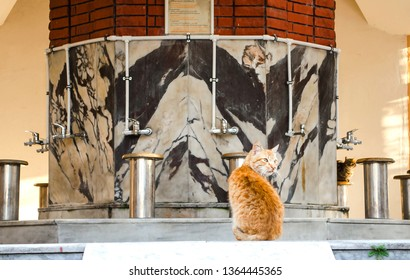 Ablution Images, Stock Photos & Vectors | Shutterstock