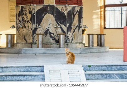 The courtyard of the mosque. Middle East. Ginger cat in the mosque. Place to commit abdest, ablutions before prayer in Islam. Ablutions among the Muslims before namaz. Selective focus image.