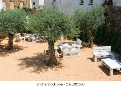 Courtyard with seating and olive trees, in the small fishing town of cadaques, typical Mediterranean village on the Costa Brava of Catalonia, Spain