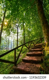 Covadonga forest stairs in Asturias Picos Europa mountains Spain
