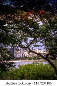 Cove of Botafogo framed by trees, view of the Atlantic Forest of Yitzhak Rabin Park in Morro do Pasmado