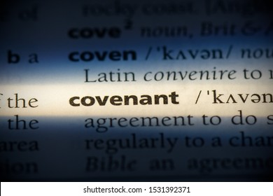 covenant word in a dictionary. covenant concept, definition.