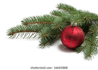 covered with branch of a Christmas tree and brilliant red ball isolated on white background