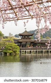 Covered Japanese Bridge over Lake in Garden behind the main building of Heian Shrine with out of focus cherry blossom foreground in Spring, Kyoto, Japan