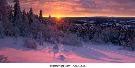 Covered with a snow Carpathians go sleep. Photo was taken near Slavske (Ukraine, Europe).
