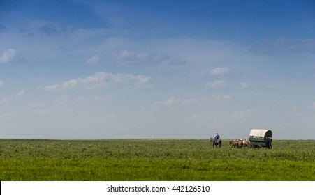 Covered Wagon on the Flint Hills of Kansas