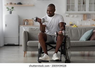 Covid-19, home workout, fit for muscle and recovery. Hard working invalid exercising with weights. African american adult male disabled in wheelchair raises dumbbells in room interior, empty space