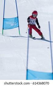 COVILHA, PORTUGAL - APRIL 2, 2017:  Mateus Tavares during the National Ski  Championships at Serra da Estrela, Covilha, Portugal.