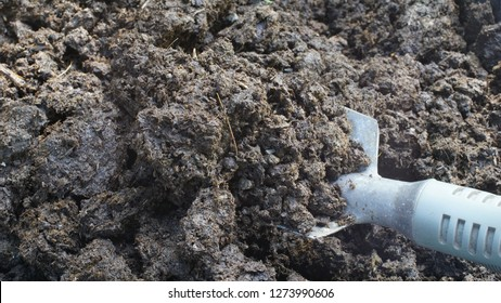 Cow dung for earth worm bedding. Cow dung used for worm castings, vermicompost, vermicast.