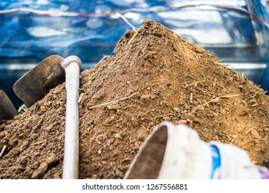 Cow dung, manure rotted compost organic fertilizer for agriculture, Cow manure with a hoe and bucket