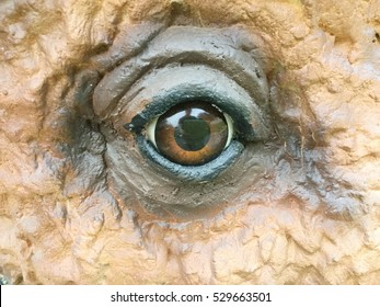 cow face statue closeup of the eye