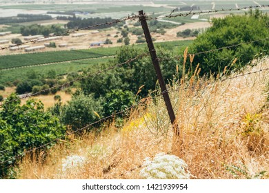 Cow fence inside thorns field, facing a valley in Golan Heights, Israel.