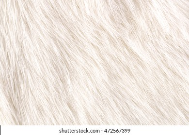 Cow fur background