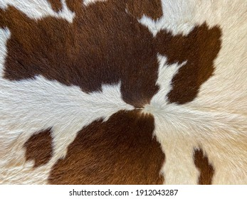Cow hair can be used as a background for your work.