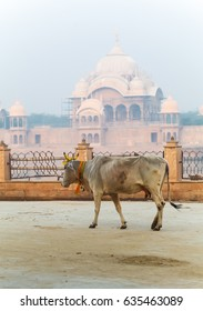 Cow Kusum Sarovar Govardhan Mandir. This lake is one of the most visited places in Mathura. Next to it there are numerous temples and ashrams. Uttar Pradesh, India.