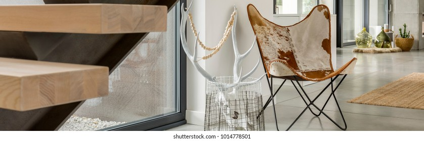 Cow leather chair and white antlers in cozy room