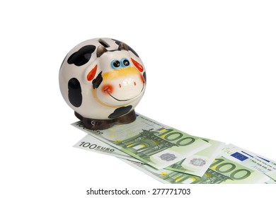 cow a moneybox on the road from notes of euro it is removed on a white background