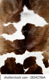Cow skin texture
