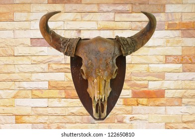 Cow skull on brick wall background