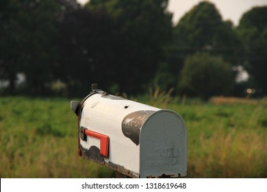 A cow style mailbox.