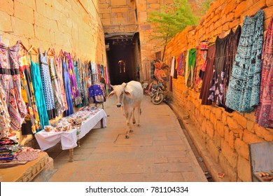 Cow walking in the streets of jaisalmer fort.