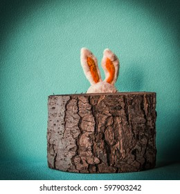 cowardly Easter rabbit hiding behind tree stump.