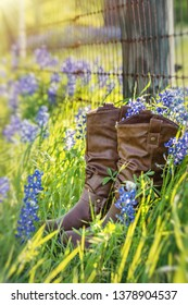 Cowboy boots in Texas bluebonnets next to a barbed wire fence. Sunny spring day.