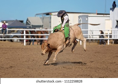 A cowboy competing in the bullriding competition at a country rodeo