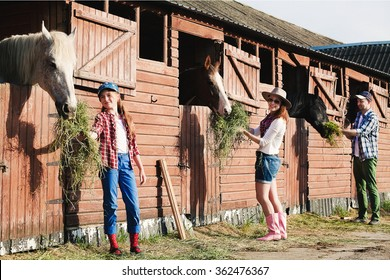 cowboy family feeding the horse hay in barn stables