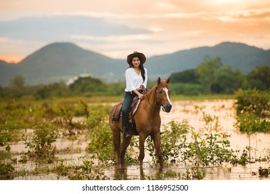 Cowboy female on horse at sunset, Silhouette low evening light.