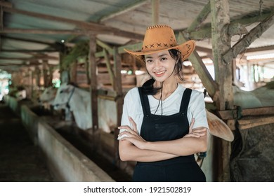 cowboy girl with crossed hands while wearing a hat in a cow stable with a cow background