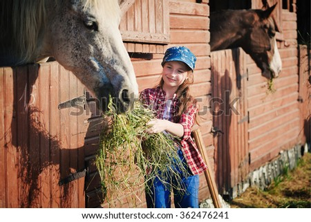 cowboy Girl on farm stables feeds the horse hay,