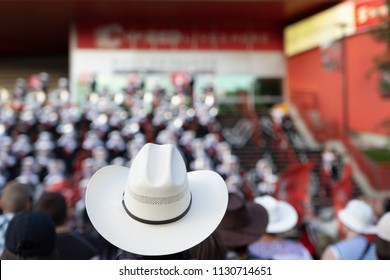 Cowboy Hat at the Calgary Stampede