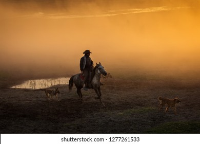 Cowboy with his dogs at sunset with dust in background