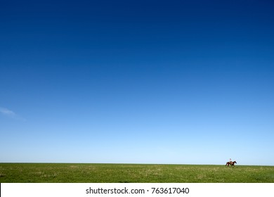 Cowboy on horse riding through green meadow against clear blue sky, Kansas, USA