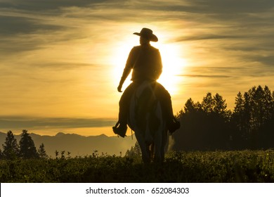 Cowboy riding across grassland with mountains behind, early morning, British Colombia, Canada