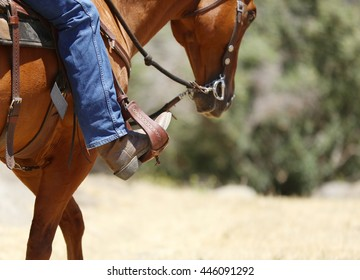 A cowboy riding a horse with a close up view of his boot in the stirrup.