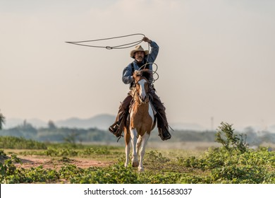 Cowboy riding a horse near the sun, taken on March 21, 2019 in Nakhon Ratchasima, Thailand.
