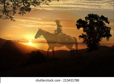 Cowboy riding a horse in the sunset in a horizontal format.